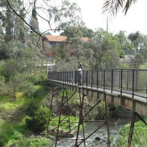 5 of Melbourne's best walks to try